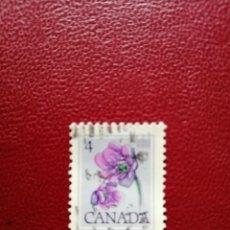 Sellos: CANADA - VALOR FACIAL 4 - AÑO 1977 - FLORA - YV 628. Lote 214417852
