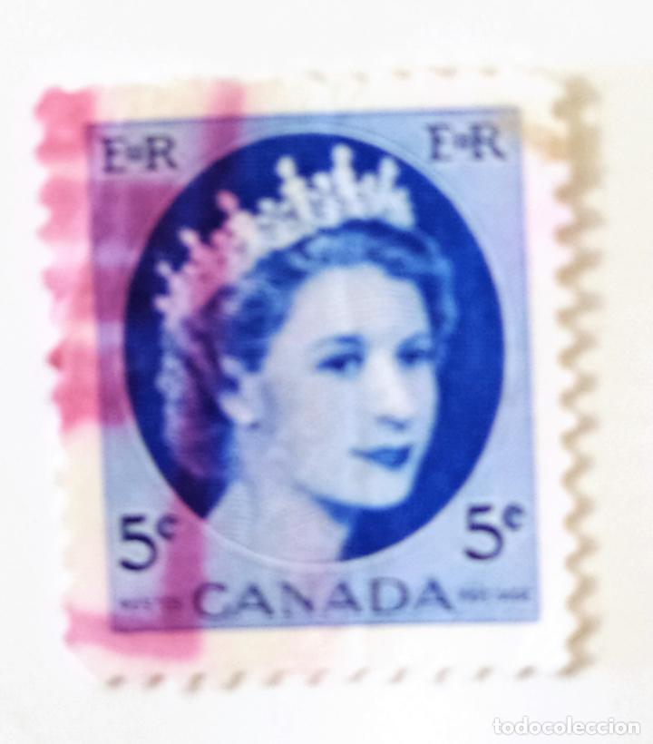 SELLO DE CANADA 5 C - 1954 - ISABEL II - USADO SIN SEÑAL DE FIJASELLOS (Sellos - Extranjero - América - Canadá)