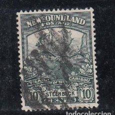 Sellos: TERRANOVA 107 USADA, FAUNA, REGRESO TROPAS DE TERRANOVA DE LA GUERRA 1914,. Lote 254166745
