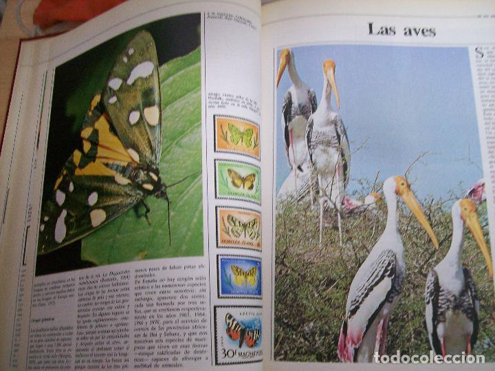 Sellos: SELLOS DEL MUNDO. Colección Temática. Ediciones Urbión.1983. Tomo I. Animales,Plantas y Arte. - Foto 3 - 68061393