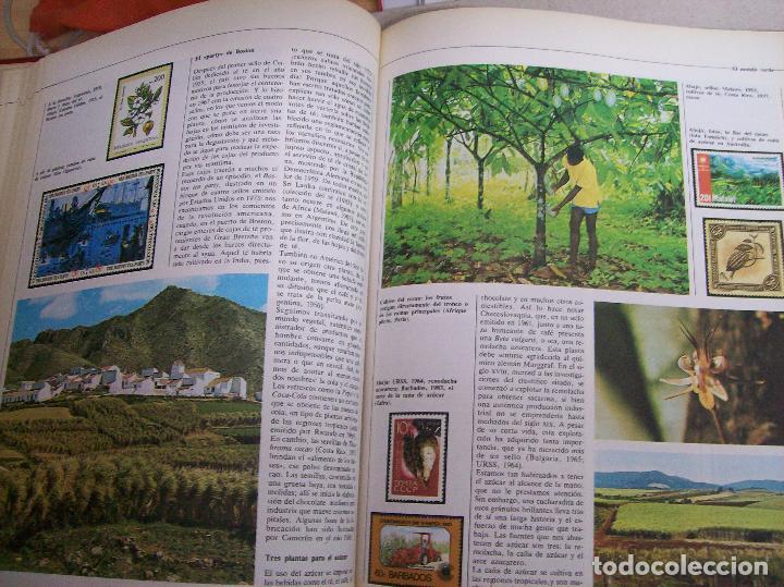 Sellos: SELLOS DEL MUNDO. Colección Temática. Ediciones Urbión.1983. Tomo I. Animales,Plantas y Arte. - Foto 4 - 68061393