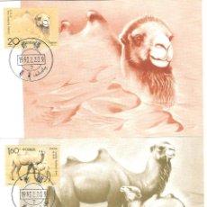 Sellos: 2 POSTALES MAXIMAS CHINA 1993 TEMA FAUNA CAMELLOS. Lote 39474015