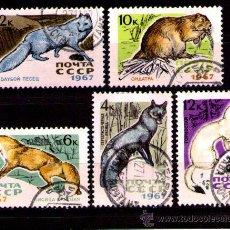 Timbres: LOTE SELLOS RUSIA1967 TEMATICA ANIMALES / FAUNA / (AHORRA GASTOS COMPRANDO MAS SELLO. Lote 18368204