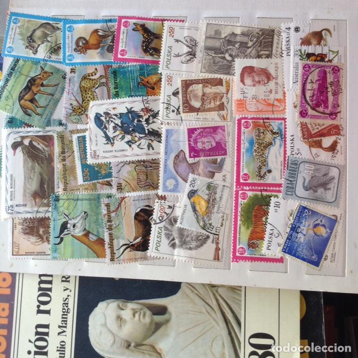 Sellos: Colección de sellos. - Foto 12 - 96100928
