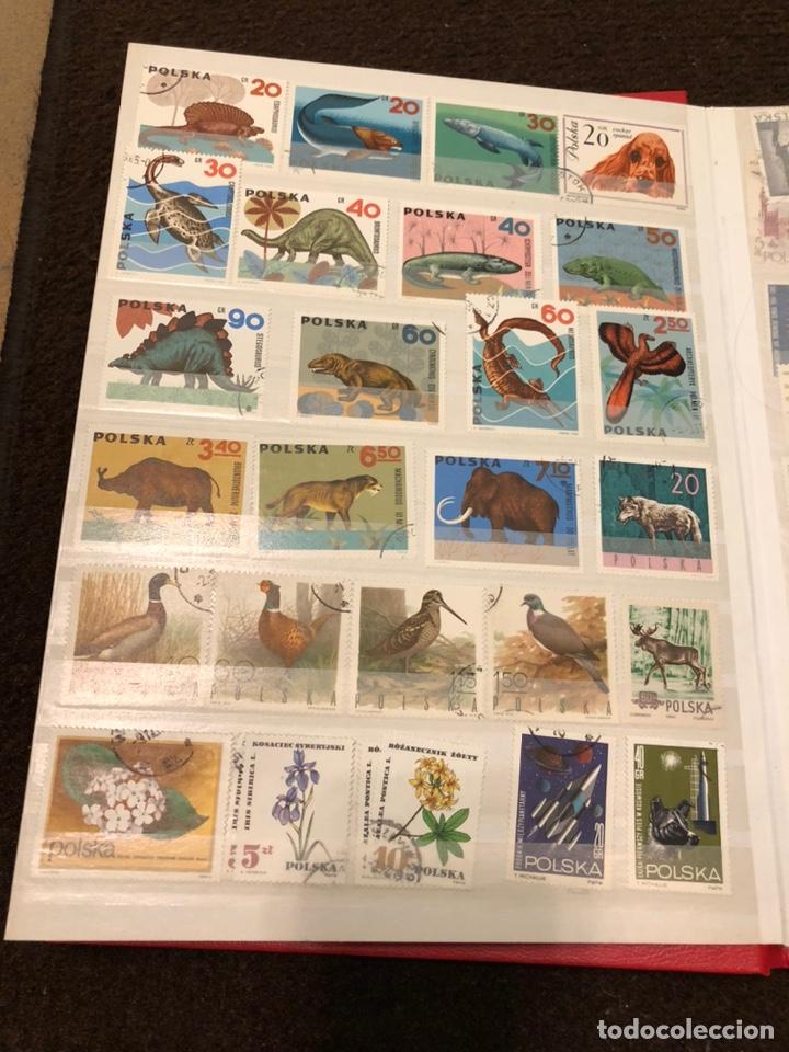 Sellos: Colección de sellos - Foto 143 - 197784250