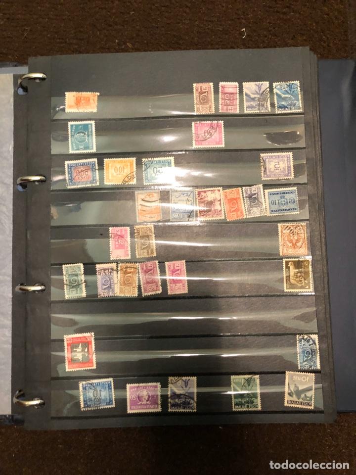 Sellos: Colección de sellos - Foto 251 - 197784250