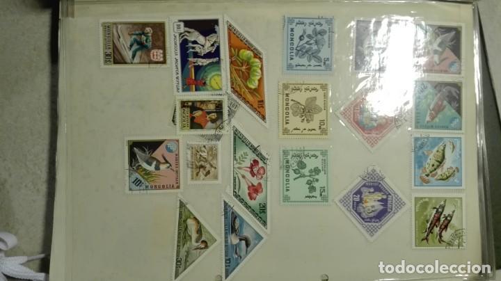 Sellos: Coleccion de miles de sellos del abuelo y mas - Foto 37 - 200878297