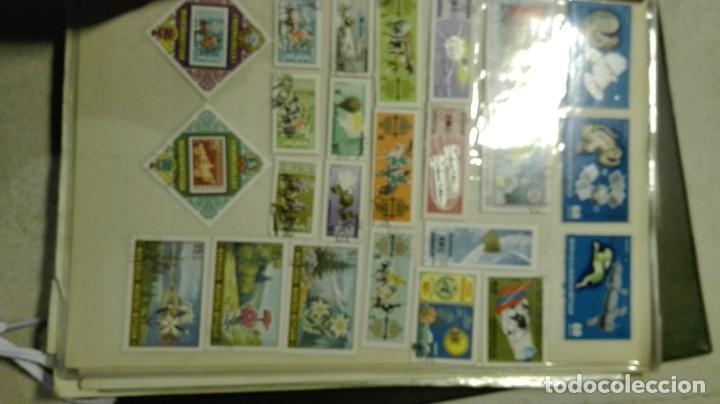 Sellos: Coleccion de miles de sellos del abuelo y mas - Foto 39 - 200878297