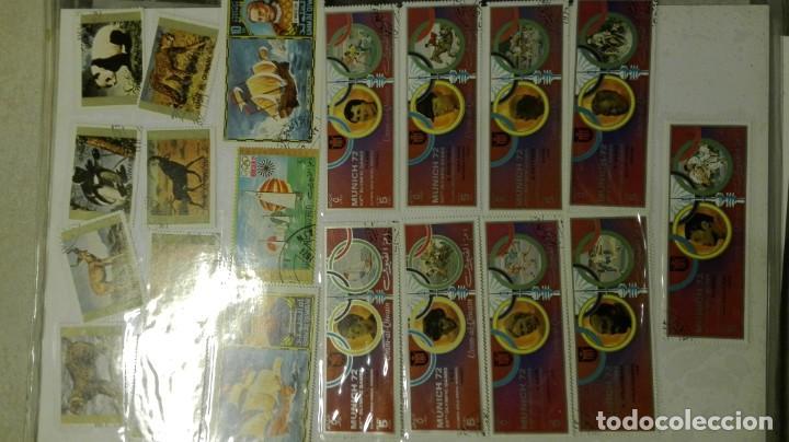 Sellos: Coleccion de miles de sellos del abuelo y mas - Foto 74 - 200878297