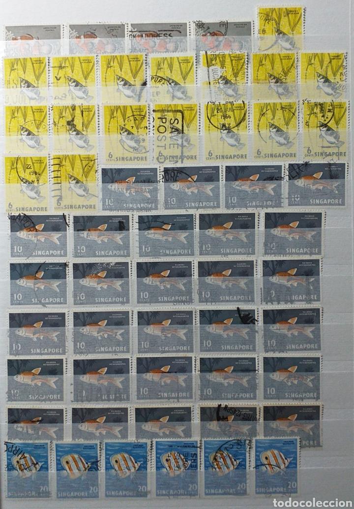 Sellos: Colección de sellos de Singapur - Foto 5 - 221519731