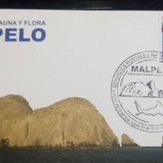 Sellos: O) 2016 COLOMBIA, TIBURÓN CABEZA DE MARTILLO, PATRIMONIO NATURAL DE LA HUMANIDAD ISLA DEL OCÉANO -MA. Lote 246605505