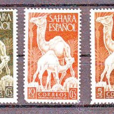 Sellos: SAHARA ESPAÑOL****.SERIE COMPLETA EDIFIL NR.91/93.CAMELLO.. Lote 24921042