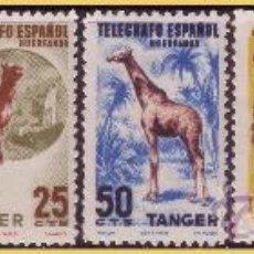 Sellos: TÁNGER BENEFICENCIA, HUÉRFANOS DE TELÉGRAFOS, FAUNA, 6 VALORES * . Lote 28908084