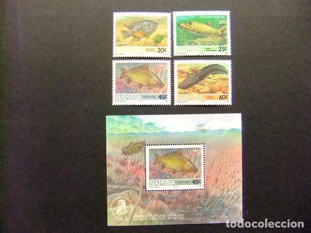 NAMIBIA NAMIBIE 1992 PECES POISSONS YVERT 675 / 78 + BLOC 14 ** MNH (Sellos - España - Colonias Españolas y Dependencias - África - Otros)