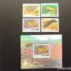 Sellos: NAMIBIA NAMIBIE 1992 PECES POISSONS YVERT 675 / 78 + BLOC 14 ** MNH. Lote 68946469
