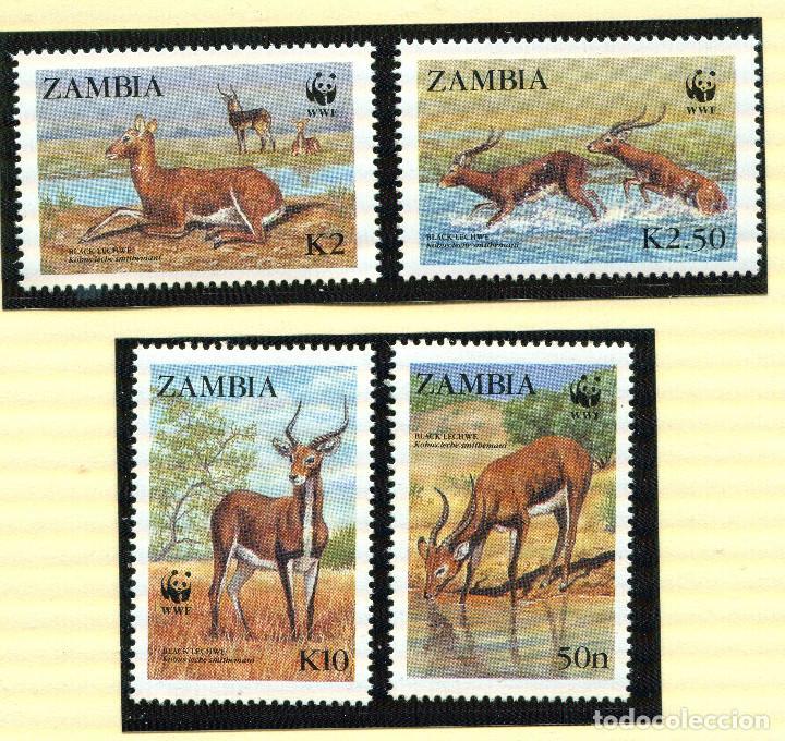 ZAMBIA 1987 MI 438 A 441 4 SELLOS MNH + 4 FDC + 4 TARJETAS MAXIMAS WWF (Sellos - España - Colonias Españolas y Dependencias - África - Otros)