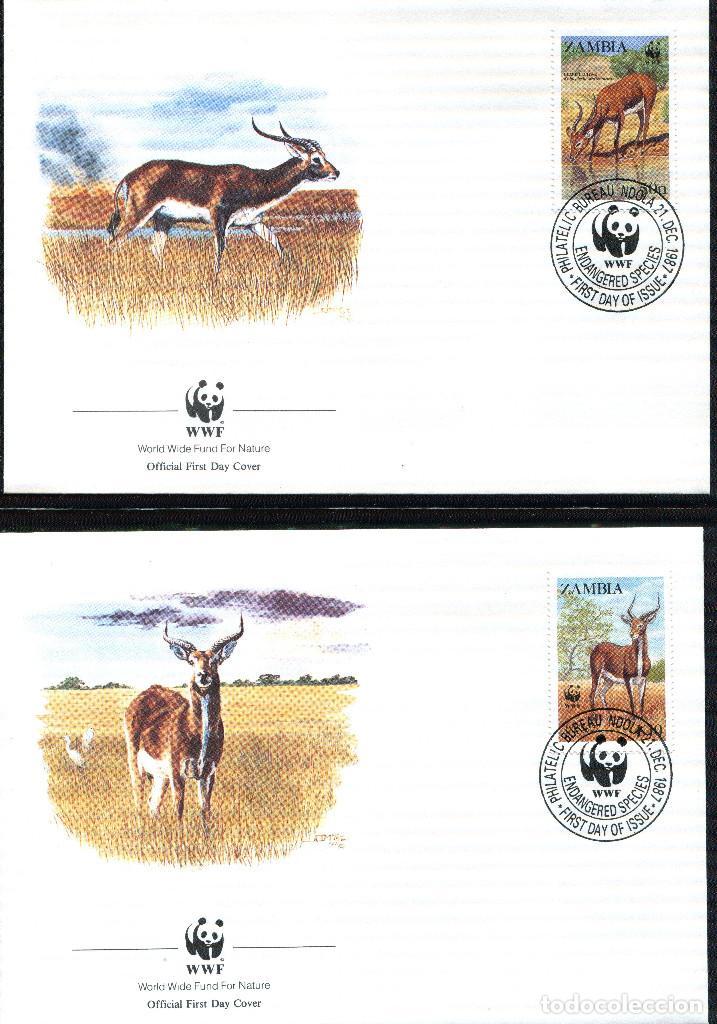 Sellos: ZAMBIA 1987 Mi 438 a 441 4 sellos MNH + 4 FDC + 4 tarjetas maximas WWF - Foto 2 - 106682603