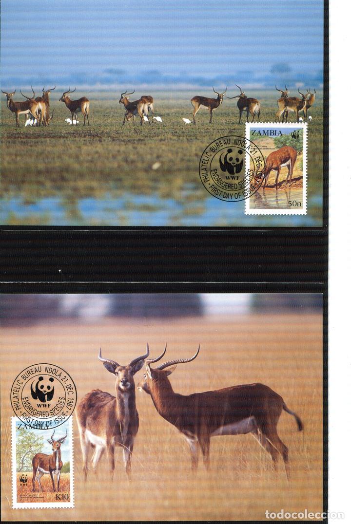Sellos: ZAMBIA 1987 Mi 438 a 441 4 sellos MNH + 4 FDC + 4 tarjetas maximas WWF - Foto 4 - 106682603