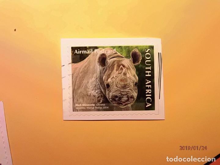 SOUTH AFRICA 2014 - ANIMALES SALVAJES - RINOCERONTE. (Sellos - España - Colonias Españolas y Dependencias - África - África Occidental)