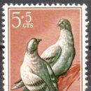 Sellos: SIDI IFNI - UN SELLO - EDIFIL #137 -***FAUNA - AVES - PALOMAS***- AÑO 1957 - NUEVO. Lote 158892306