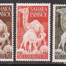 Sellos: SAHARA 1951 - DROMEDARIOS SERIE COMPLETA NUEVA SIN FIJASELLOS EDIFIL Nº 91/93. Lote 190865268
