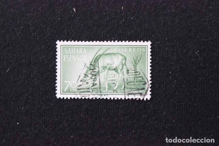 Sellos: 3 sellos Sahara Español Día del sello 1955. Fauna Peces y Orix - Foto 3 - 153704282