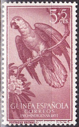 1957 - GUINEA ESPAÑOLA - PRO INDIGENAS - LORO GRIS AFRICANO - EDIFIL 365* (Sellos - España - Colonias Españolas y Dependencias - África - Guinea)