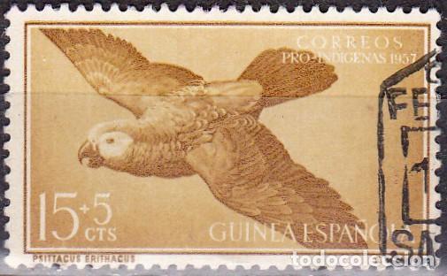 1957 - GUINEA ESPAÑOLA - PRO INDIGENAS - LORO GRIS AFRICANO - EDIFIL 366 (Sellos - España - Colonias Españolas y Dependencias - África - Guinea)