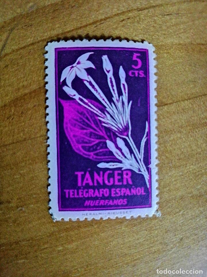 TANGER - VALOR FACIL 5 CTS - TELEGRAFO ESPAÑOL - HUÉRFANOS - FLORA (Sellos - España - Colonias Españolas y Dependencias - África - Tanger)