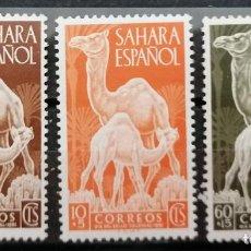 Sellos: 1951 .SAHARA ESPAÑOL. . DIS DEL SELLO .SERIE ** (21-444). Lote 262346540