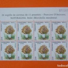 Sellos: ANDORRA, EDIFIL 181, NATURALEZA, BOLET, 1984 - 1 BLOQUE DE 8 SELLOS, NUEVOS.. L1042. Lote 204712108
