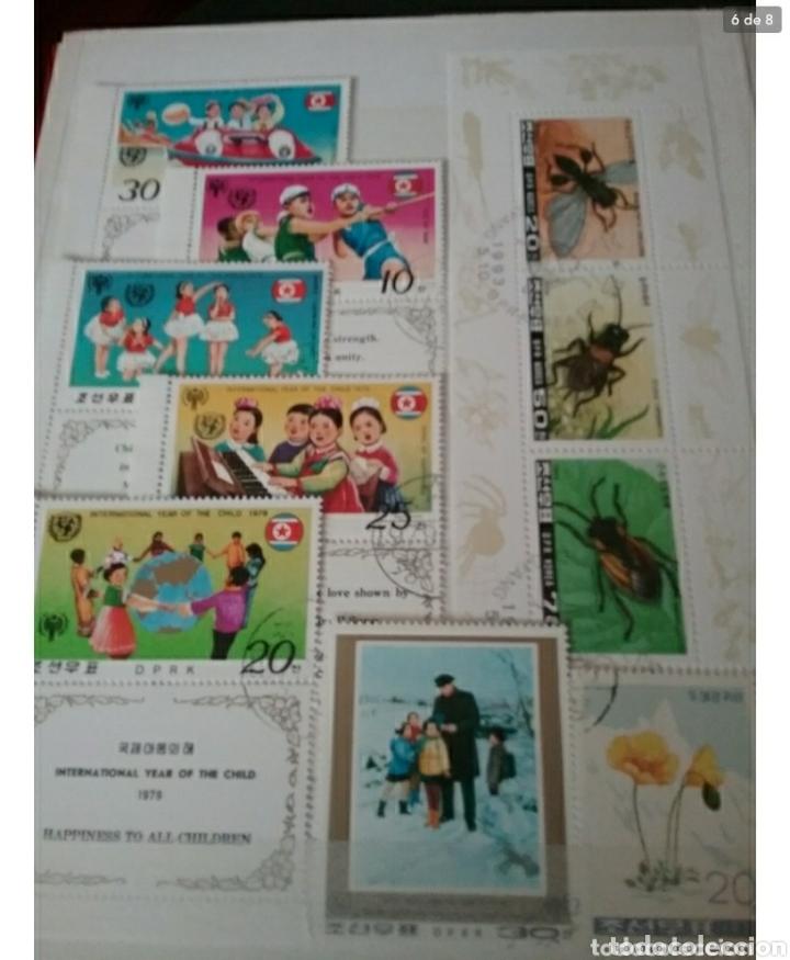 Sellos: Clasificador (170 x 220 cm) Sellos + HB Korea del Norte (Corea.DPRK) mtdos. VER FOTOS 8. - Foto 6 - 119151004