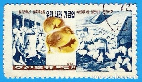 Sellos: COREA. REPUBLICA POPULAR. 1972. CRIA DE POLLOS - Foto 1 - 212262952