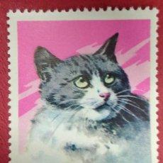 Sellos: COREA DEL NORTE 1977.GATOS (1977) DOMESTIC CAT (FELIS SILVESTRIS CATUS) YT:KP 1479,. Lote 288598543