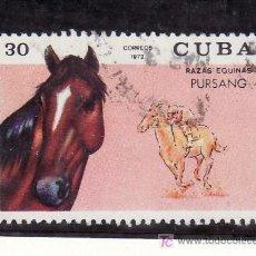 Francobolli: CUBA 1592 USADA, FAUNA, CABALLO PURA SANGRE. Lote 19504591
