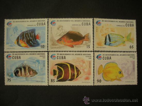 CUBA 1995 IVERT 3431/6 *** FAUNA MARINA - PECES - 35º ANIVERSARIO ACUARIO NACIONAL (Sellos - Extranjero - América - Cuba)