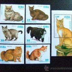 Sellos: CUBA 1994 YVERT & TELLIER Nº 3351 - 3356 + BF 138 ** FAUNA. Lote 262165335