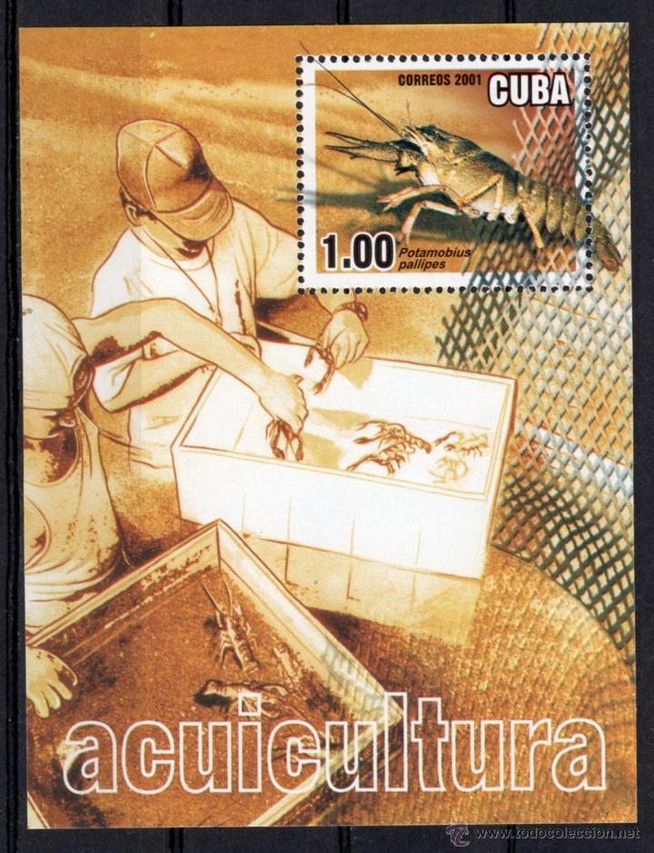 H.B. DE CUBA DEL AÑO 2001, Nº 168 (Sellos - Extranjero - América - Cuba)