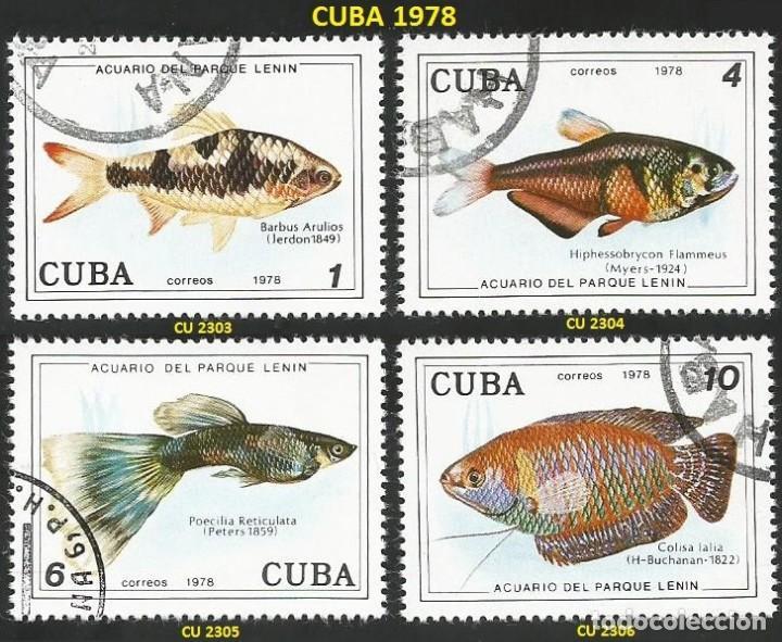 CUBA 1978 - CU 2303 A 2306 - 4 SELLOS NUEVOS - TEMA PECES (Sellos - Extranjero - América - Cuba)