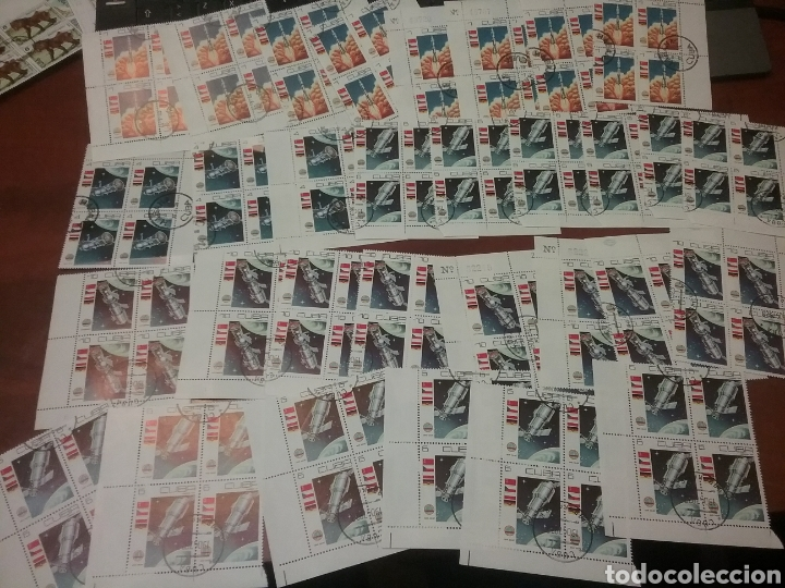 Sellos: Sellos R. Cuba mtdos/bloques 2x2/1970-1980/stock/coleccion/al por mayor/flora/fauna/animales/ - Foto 7 - 197579175