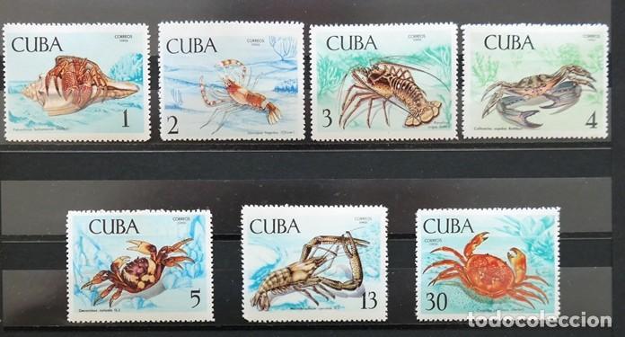 Sellos: 7 Sellos Cuba. 1969 Crustáceos - Foto 2 - 227781785