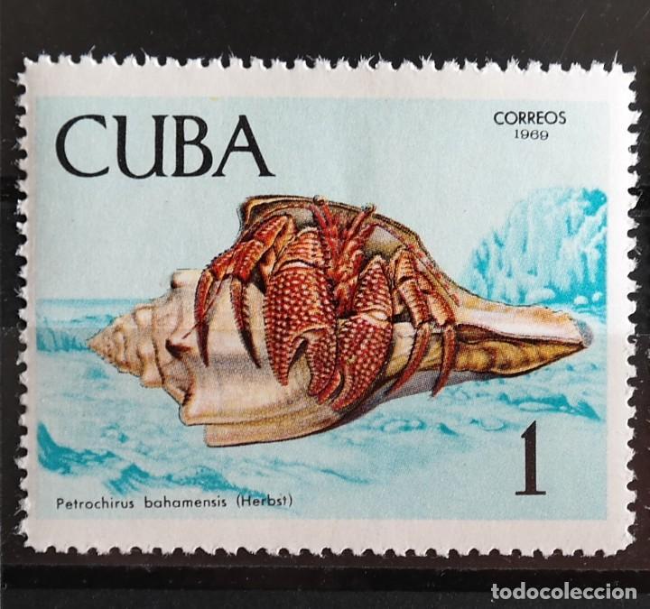 Sellos: 7 Sellos Cuba. 1969 Crustáceos - Foto 3 - 227781785