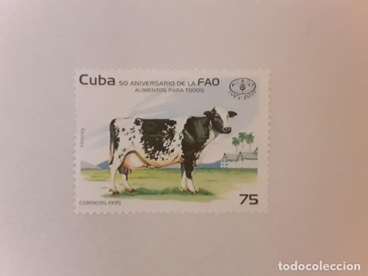AÑO 1995 CUBA SELLO USADO (Sellos - Extranjero - América - Cuba)