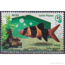 Sellos: ⚡ DISCOUNT CUBA 2015 AQUARIUM FISH - LOCHA PAYASO MNH - FISH. Lote 268834134