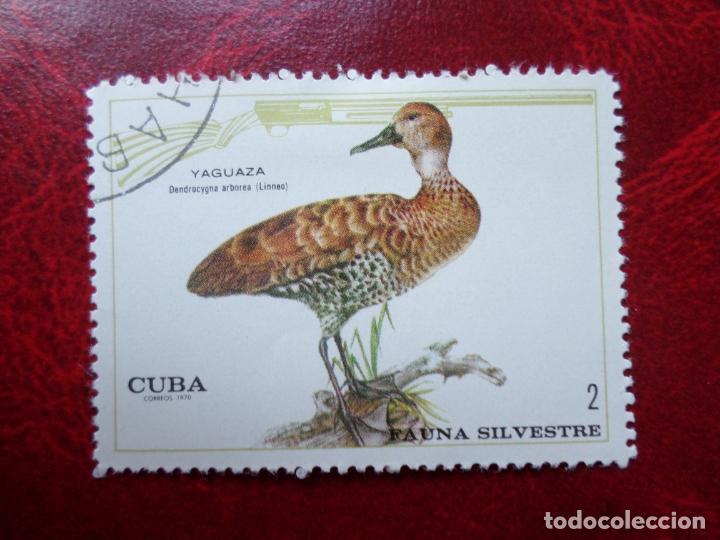 *CUBA, 1970, FAUNA SILVESTRE, YVERT 1436 (Sellos - Extranjero - América - Cuba)