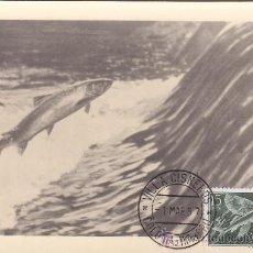 Sellos: SAHARA PECES DIA DEL SELLO 1954 (EDIFIL 118) EN BONITA Y RARA TARJETA MAXIMA.. Lote 21885456