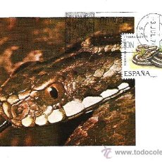 Timbres: ESPAÑA. TARJETA MAXIMA PRIMER DIA. VIBORA DE LATASTE. 1974. Lote 18631418