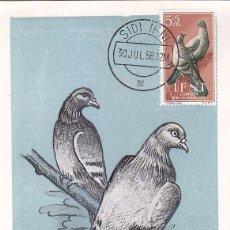 Sellos: IFNI PRO INFANCIA 1957 PALOMAS (EDIFIL 135) EN BONITA Y RARA TARJETA MAXIMA.. Lote 4039480