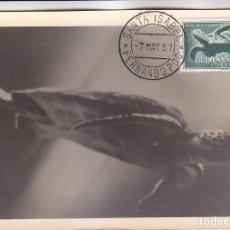 Sellos: GUINEA ESPAÑOLA TORTUGA DIA DEL SELLO 1954 (EDIFIL 340) EN BONITA Y RARA TARJETA MAXIMA.. Lote 14935326