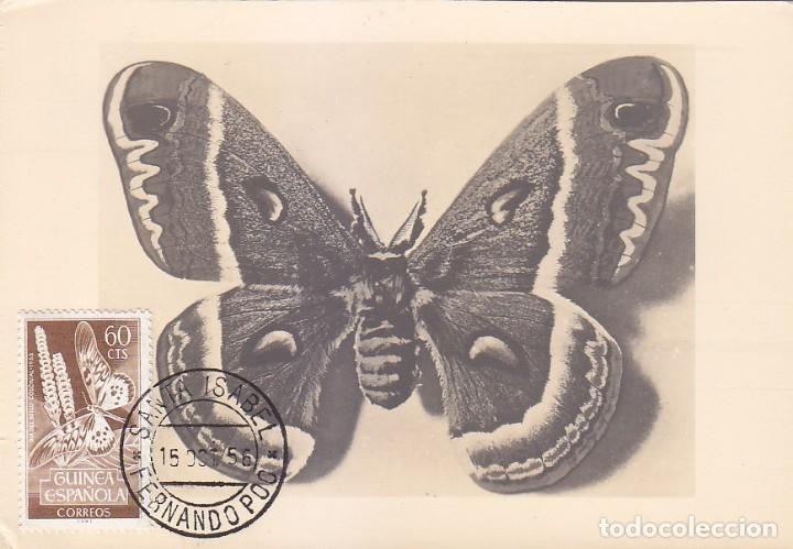 GUINEA ESPAÑOLA MARIPOSAS DIA DEL SELLO 1953 (EDIFIL 333) EN BONITA Y RARA TARJETA MAXIMA MODELO 1. (Sellos - España - Dependencias Postales - Tarjetas Máximas)